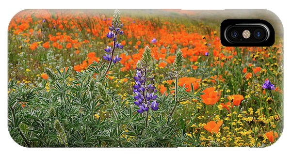 iPhone Case - Lupine And Poppies In Antelope Valley by Kathy Yates