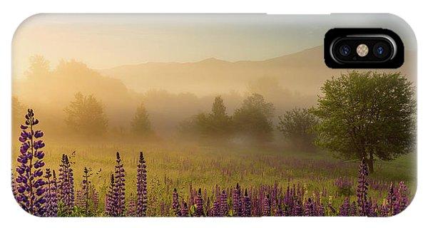 Lupine In The Fog, Sugar Hill, Nh IPhone Case
