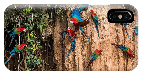 Parrots iPhone Case - Macaws In Clay Lick In The Peruvian by Ostill Is Franck Camhi