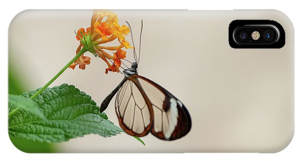 IPhone Case featuring the photograph Made Of Glass by Anjo Ten Kate