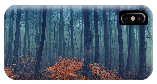 Beams iPhone Case - Magical Foggy Seasonal Forest Tree by Babaroga