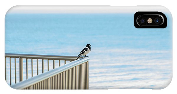 Magpie In Waiting IPhone Case