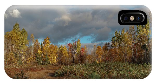 Maine Wilderness Color 2 IPhone Case