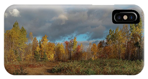 IPhone Case featuring the photograph Maine Wilderness Color 2 by Rick Hartigan