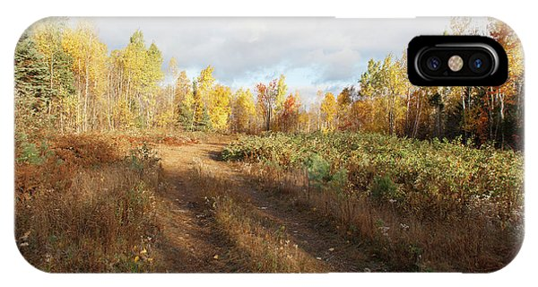 IPhone Case featuring the photograph Maine Wilderness Color by Rick Hartigan