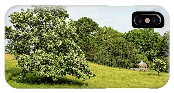 Majestic Catalpa At Winterthur IPhone Case