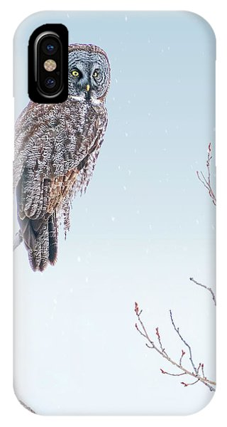 Majestic Great Gray Owl IPhone Case
