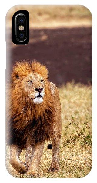 Majesty IPhone Case