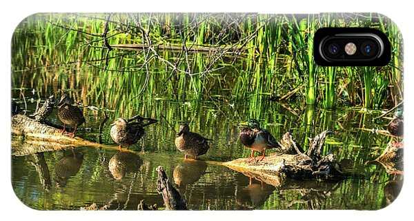 IPhone Case featuring the photograph Mallard Family by Edward Peterson
