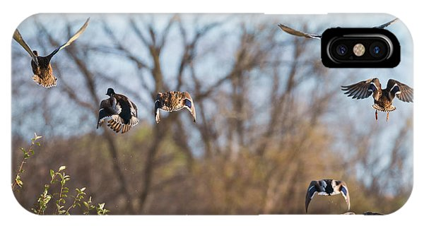 IPhone Case featuring the photograph Mallards Flying Away by Edward Peterson