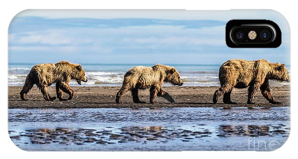 Mama Bear And Her Two Cubs On The Beach. IPhone Case