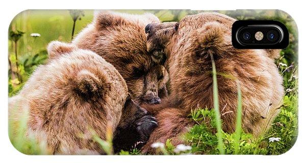 Mama Bear Nursing Her Two Cubs, Lake Clark National Park, Alaska IPhone Case