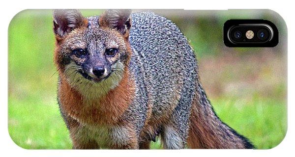 Mama Fox IPhone Case