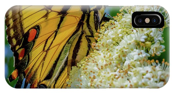 Manassas Butterfly IPhone Case