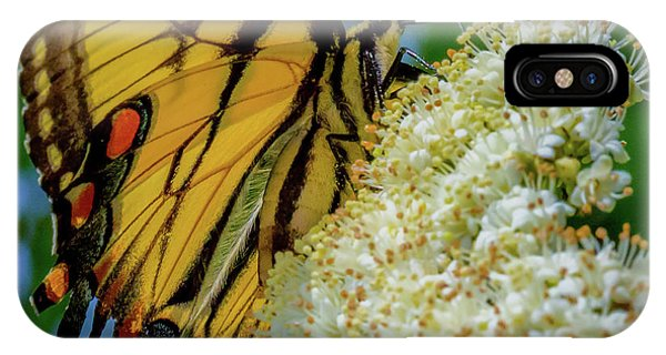 Manassas Butterfly IPhone Case