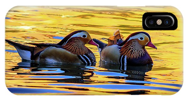 Mandarin Ducks IPhone Case