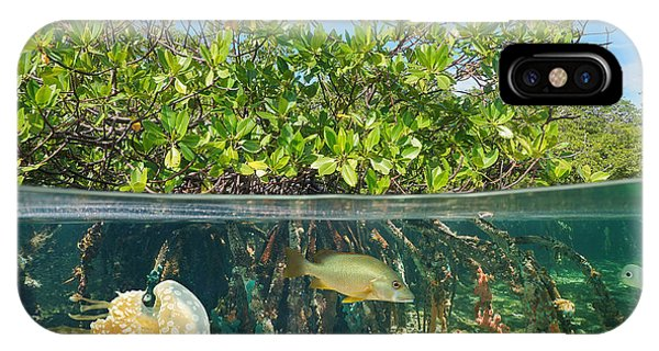 Under Water iPhone Case - Mangrove Above And Below Water Surface by Damsea