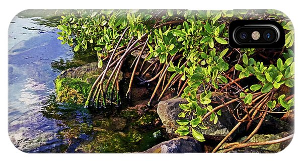 Mangrove Bath IPhone Case