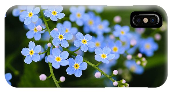 Harmony iPhone Case - Meadow Plant Background Blue Little by Oksana Shufrych