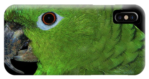 Mealy Amazon IPhone Case