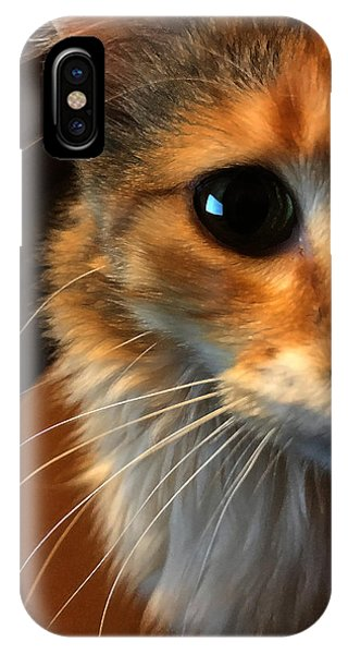 IPhone Case featuring the photograph Mercy by Jeff Iverson