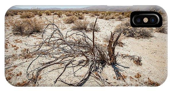 Mesquite In The Desert Sun IPhone Case
