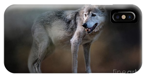 Mexican Wolf IPhone Case