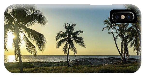 Mexico Palm Tree Sunrise IPhone Case
