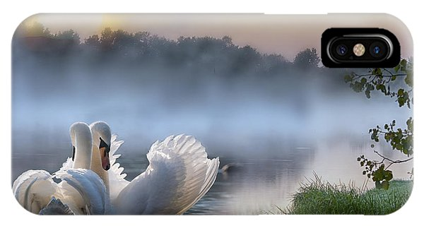 Misty Swan Lake IPhone Case