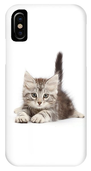 IPhone Case featuring the photograph Momentary Paws by Warren Photographic