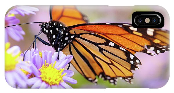 Monarch Close-up IPhone Case