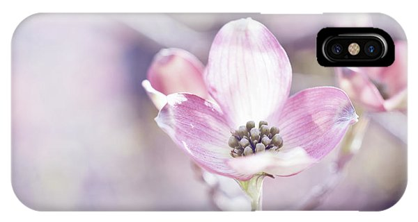 IPhone Case featuring the photograph Morning Dogwood by Michelle Wermuth