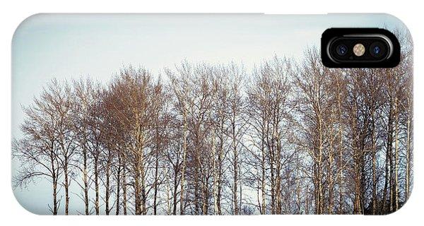 Treeline iPhone Case - Morning Sadness by Stelios Kleanthous