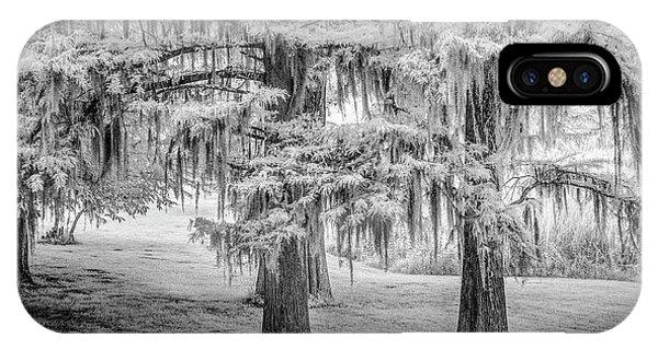 Moss Laden Trees 4132 IPhone Case