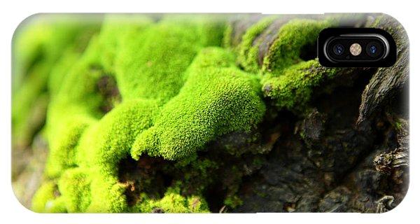 Lush iPhone Case - Moss by Leungchopan