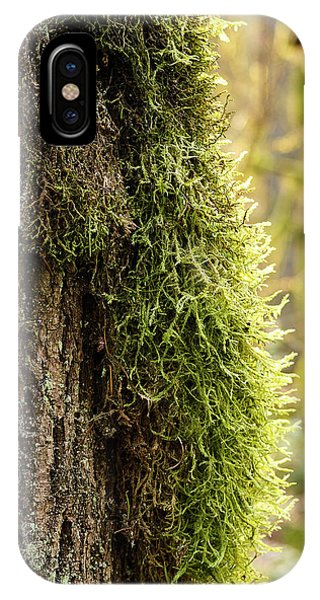 Moss On Bark IPhone Case