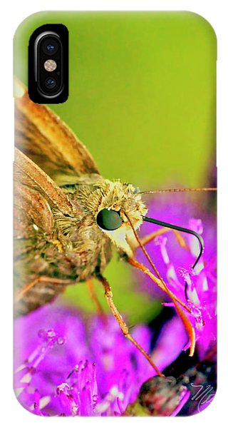 Moth On Purple Flower IPhone Case