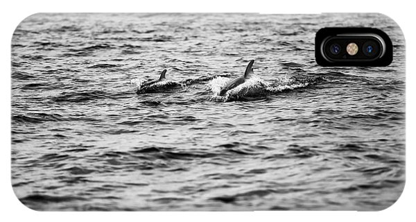 Mother Dolphin And Calf Swimming In Moreton Bay. Black And White IPhone Case
