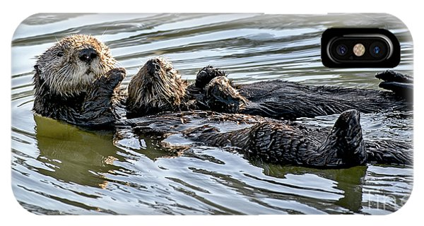 Mother Sea Otter Relaxing With Baby IPhone Case