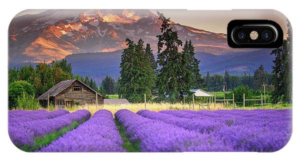 Mount Hood Lavender Field  IPhone Case