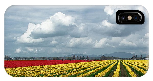 iPhone Case - Mount Vernon Tulip Rows by David Patterson