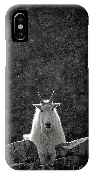 IPhone Case featuring the photograph Mountain Goat by Brad Allen Fine Art