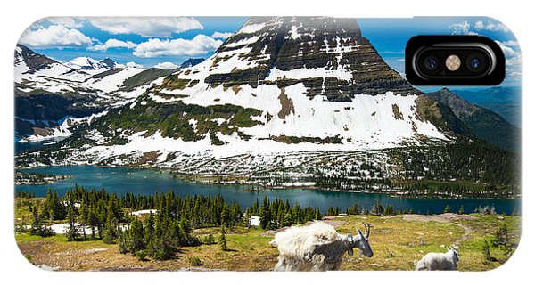 Hiking Path iPhone Case - Mountain Goats And Hidden Lake, Glacier by Pung