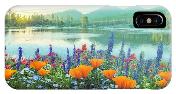 iPhone Case - Mountain Summer Blooms Misty Morning by Debra and Dave Vanderlaan
