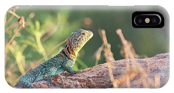 Mountian Boomer IPhone Case