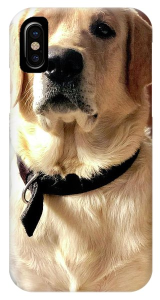 iPhone Case - Labrador Dog by Arun Jain