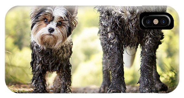 Muddy Little Dog Stands Next To A Muddy Phone Case by Stickler