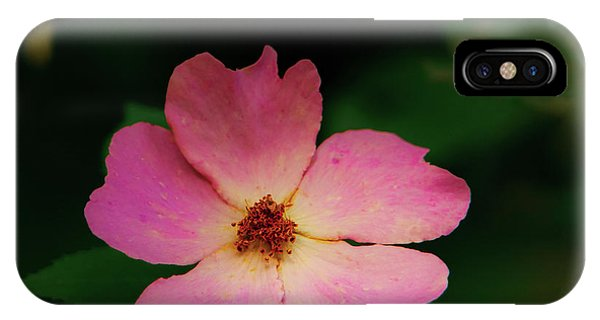 Multi Floral Rose Flower IPhone Case
