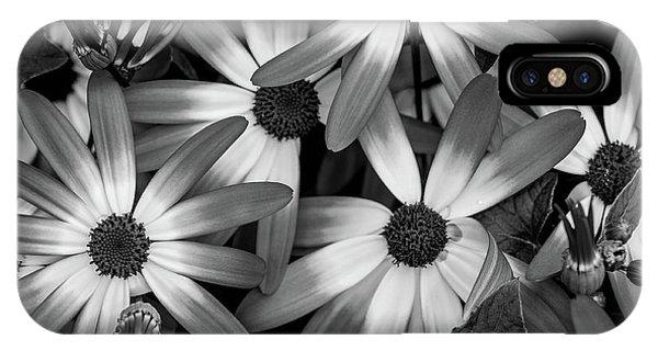 Multiple Daisies Flowers IPhone Case