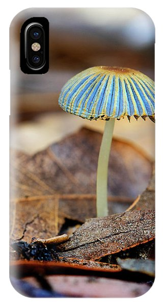 Mushroom Under The Oak Tree IPhone Case